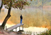 Aile Terapisti ve Ailede Travmayla Başla Çıkma